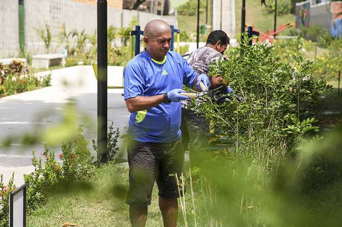"""Prosamim lança programa """"Amigo Verde"""" para manutenção dos parques revitalizados na capital / Foto : Tiago Corrêa/SRMM-UGPE"""