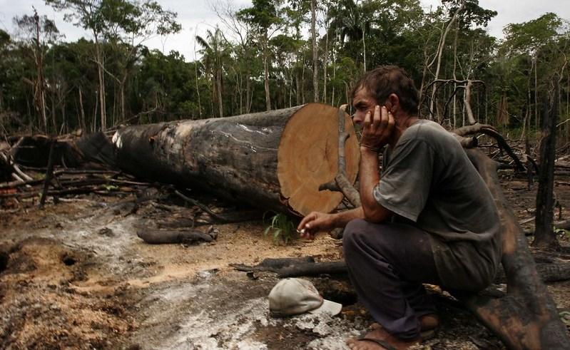 Desmatamento em Lábrea, no Sul do Amazonas / Foto : Alberto Araújo / Amazônia Real