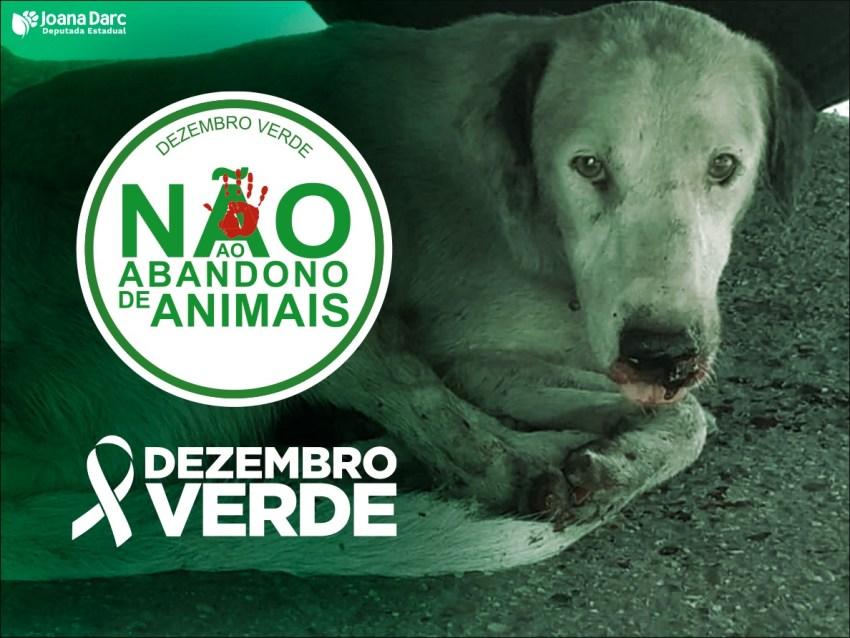 Dezembro Verde alerta sobre o abandono de animais no Amazonas