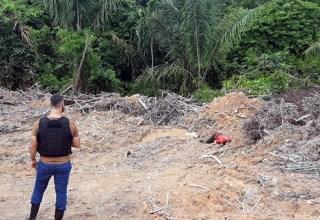 Corpo é 'ticado' e jogado atrás de maternidade em Manaus
