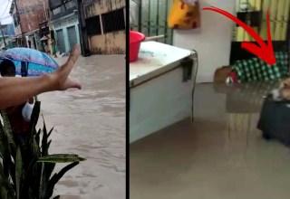 Toró desta tarde em Manaus alaga inúmeras casas em área de risco