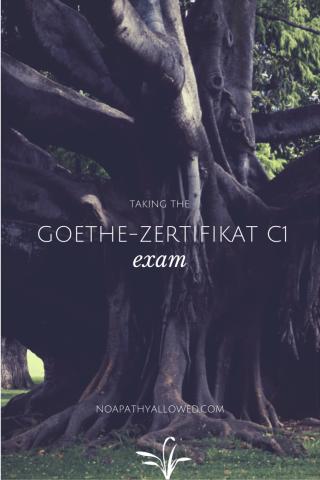 Taking the Goethe-Zertifikat C1 exam   No Apathy Allowed