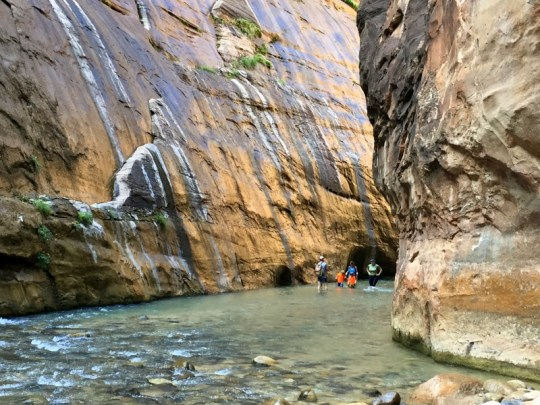 The Narrows, Zion National Park - Arizona and Utah Grand Canyon Road Trip