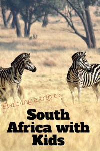 Planning a trip to South Africa with kids means thinking about things like age, health and so much more!