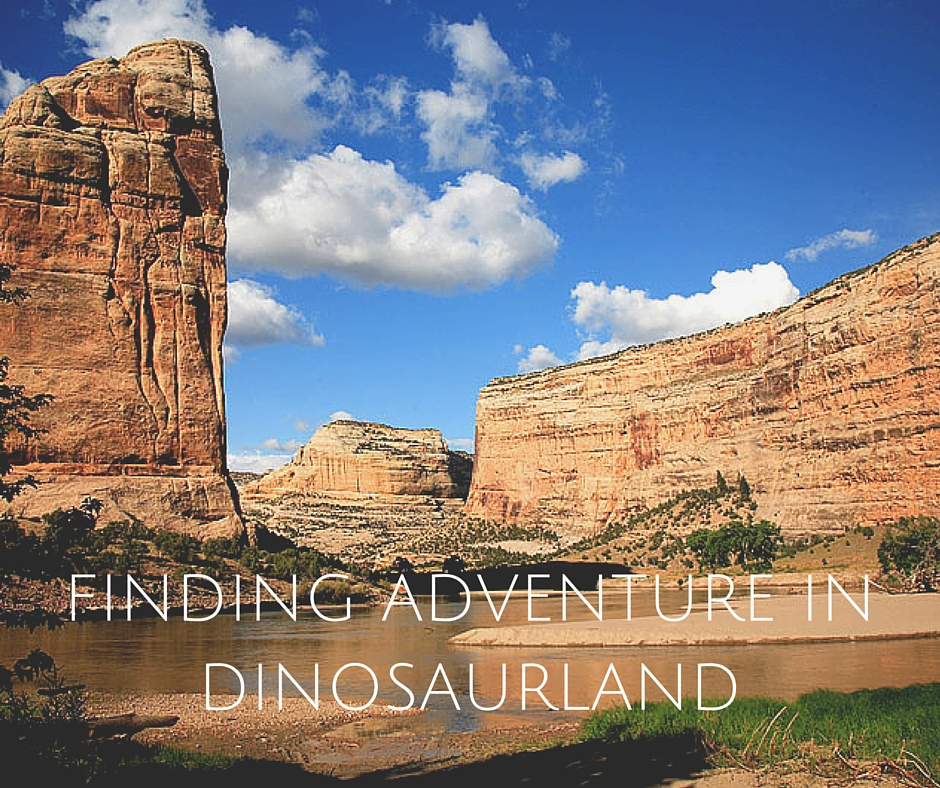 Finding Adventure In Dinosaurland