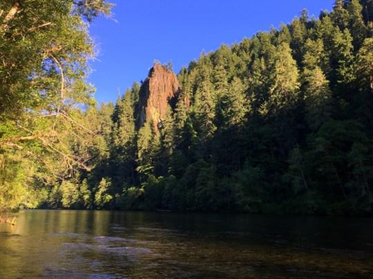 Exploring the McKenzie River