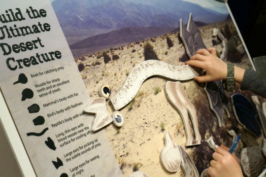 Death Valley with kids - Visitor Center