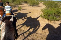 Top 10 Things to do in Tucson for families - Dude Ranch