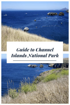 Guide to Channel Islands National Park (1)
