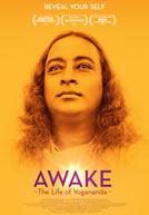 AwakeTheLifeOfYoganda-poster