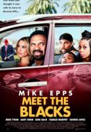 MeetTheBlacks-poster