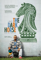 TheDarkHorse-poster