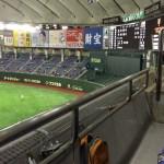 東京ドームで行われたイースタンの試合は楽しみがいっぱい