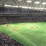今年最後の野球観戦は日米野球第3戦!