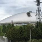 札幌ドームの展望台で、日本ハムファイターズの練習風景を見られる