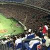 東京ドームでソフトボール