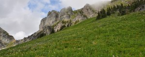 mountain trail hike tours okanagan
