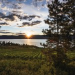 touring winery estates okanagan