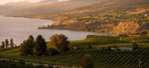 okanagan wine tours