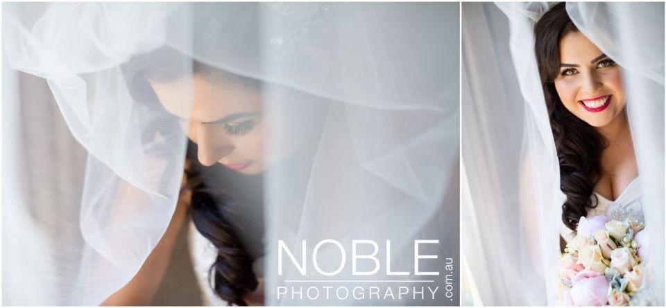 stunning bridal veil portrait