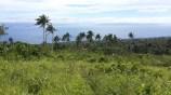10 Acres Qila, Taveuni 01
