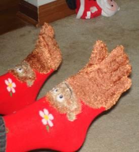 monkey-toes