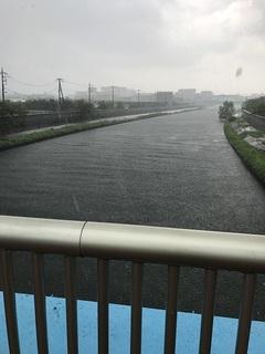 新河岸川.JPG