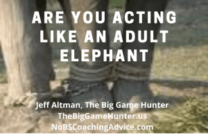 Are you acting like an adult elephant