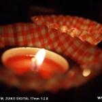 オリンパスPEN E-P1 試し撮り-ライブ