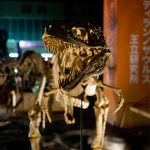 『恐竜王国2012』