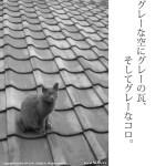 Leica X2 試し撮り(曇り)