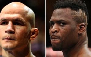 Luta entre Junior Cigano e Francis Ngannou está sendo planejada…