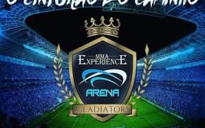mma-experience