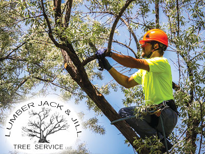 Lumber Jack & Jill Tree Service in Fort Collins