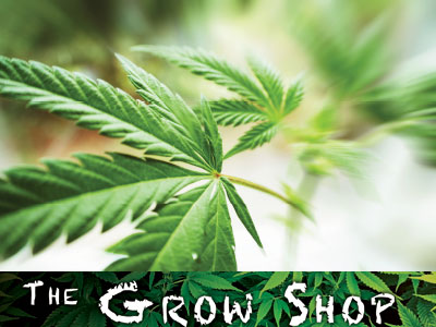 The Grow Shop Fort Collins