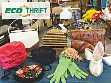 Eco Thrift in Fort Collins, CO