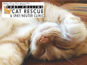 Fort Collins Cat Rescue & Spay/Neuter Clinic