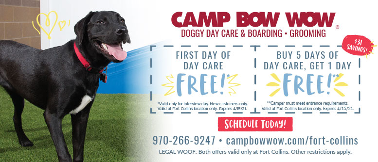 Camp Bow Wow, Loveland, CO - Dog Grooming & Boarding Coupon Deals