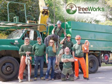 TreeWorks Tree Service, Fort Collins, NoCo