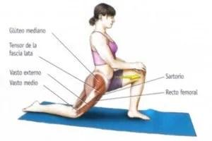 Estiramiento  musculo psoas