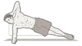 plancha lateral musculos del abdomen