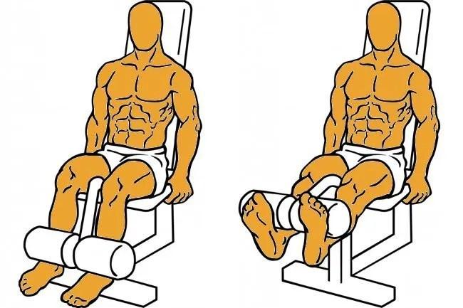 trabajar el rango muscular completo