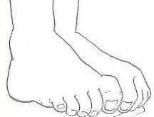 ejercicios muscultura intrínseca del pie