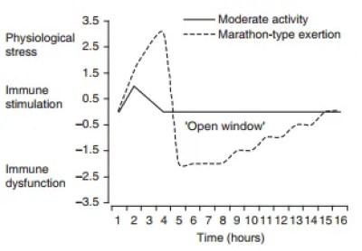 sistema inmunológico después del maratón