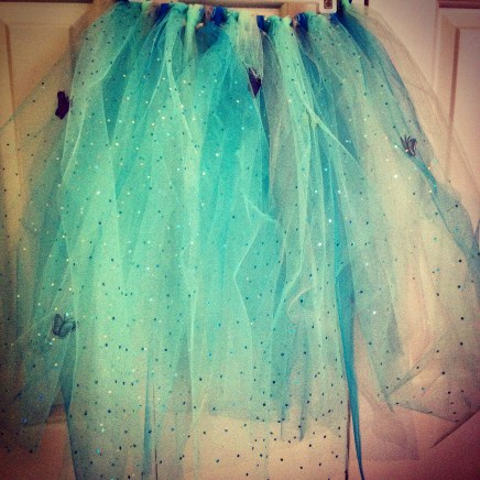 homemade'Cinderella' tutu