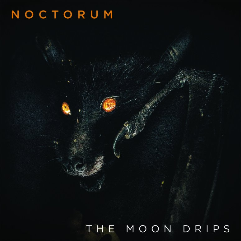 The Moon Drips Single Cover - Photo by Rob Potter