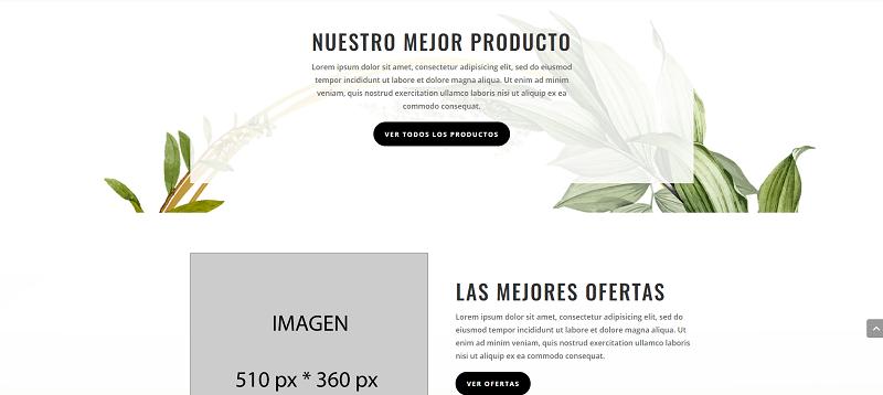 Diseño de tienda online base para tu nueva tienda ecommerce mensual