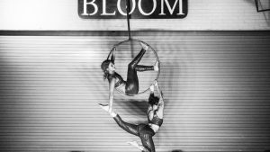 Bloom is Back to Bring Fringe Dance and Performance Arts