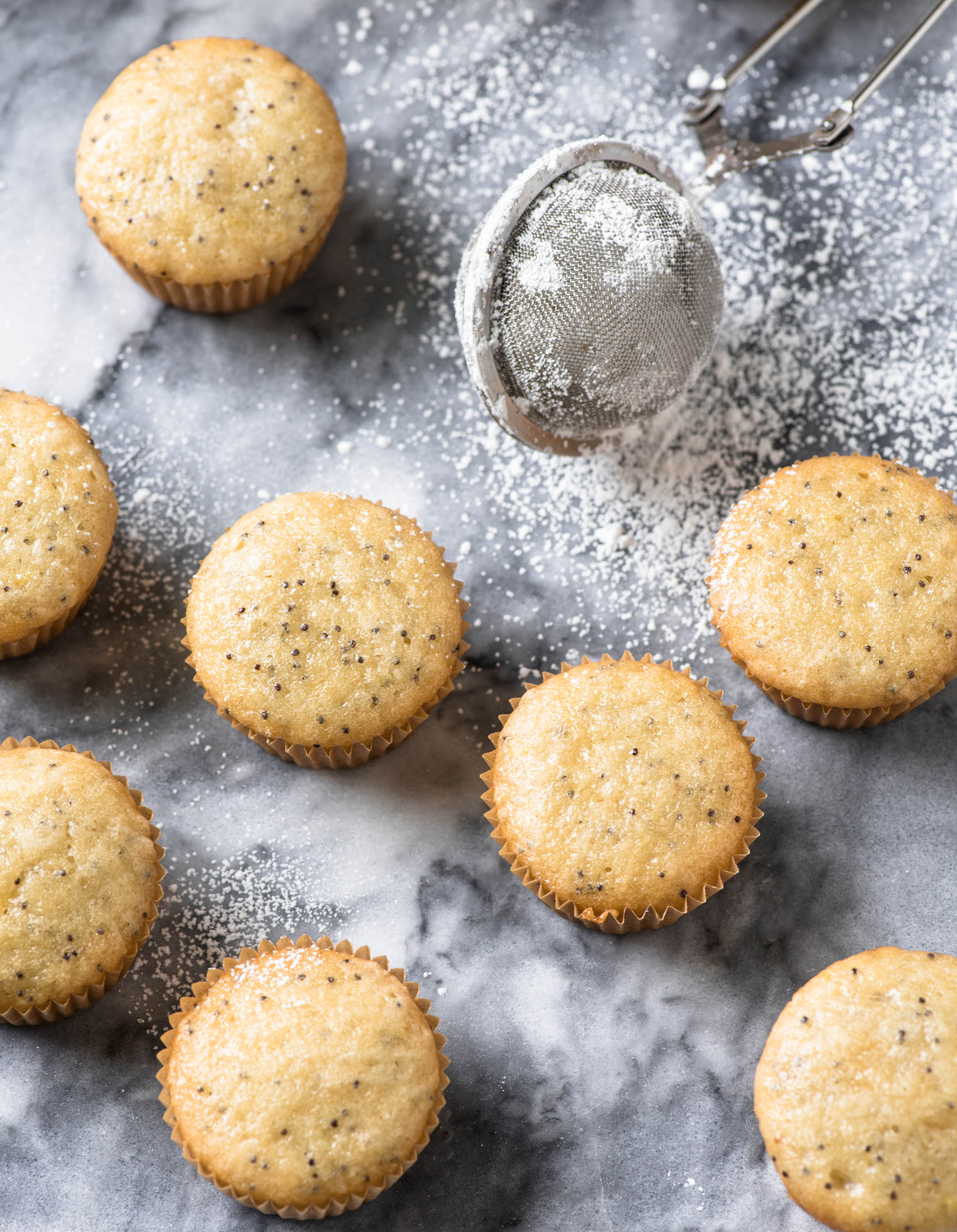 over head shot of lemon poppyseed cupcakes with icing sugar on the side