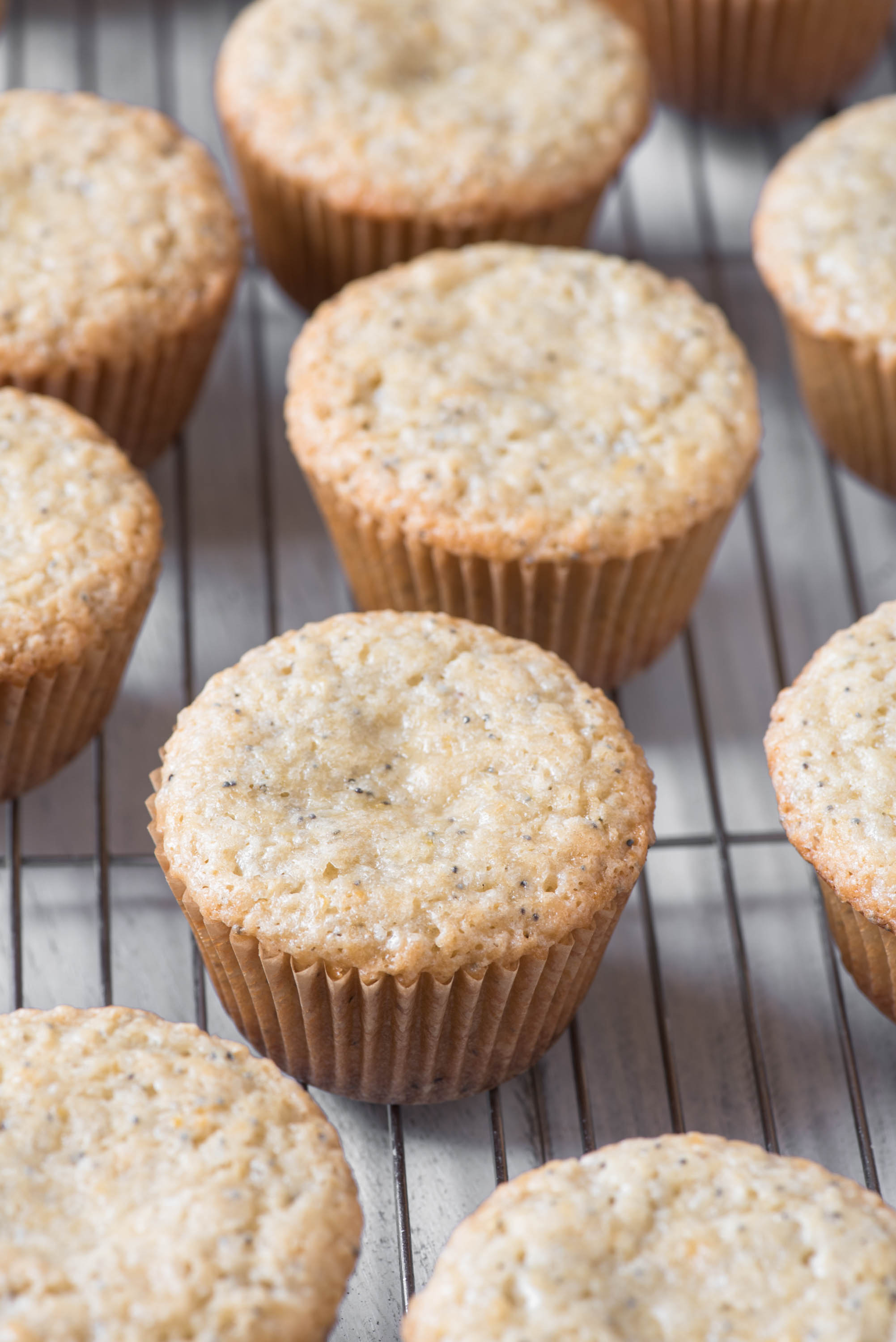 lemon poppyseed cupcakes6